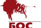 Строительная компания СК БОС
